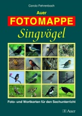 Auer FOTOMAPPE Singvögel