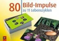 80 Bild-Impulse z.11 Lebensz.
